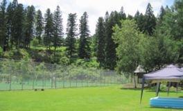 大池市民の森 大池キャンプ場