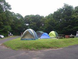 もみのき森林公園オートキャンプ場