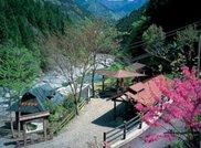 かずら橋キャンプ村