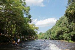 ゆうすい自然の森キャンプ場