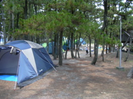 【臨時閉鎖中】白浜海水浴場キャンプ場