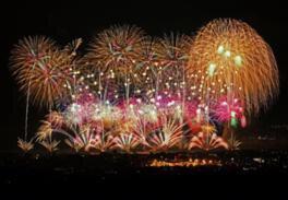 【2020年開催なし】おぢやまつり大花火大会