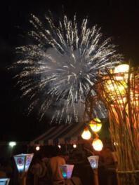 【2020年中止】2019とくぢ夏祭り花火大会