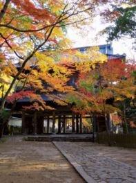 大本山 永源寺の紅葉