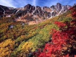 中央アルプス駒ヶ岳ロープウェイの紅葉