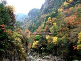 みたらい渓谷の紅葉