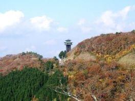高野龍神スカイライン(国道371号線)(護摩壇山周辺)の紅葉