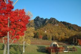瑞牆山・本谷川渓谷の紅葉
