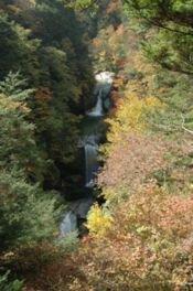 尾白川渓谷の紅葉