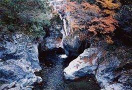 県立自然公園 中津渓谷の紅葉