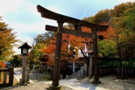 那須高原(温泉街)の紅葉