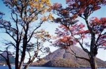 【紅葉・見頃】榛名山・榛名湖