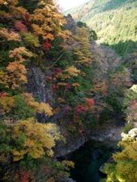 付知峡の紅葉