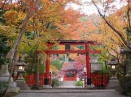 洛西(大原野神社)の紅葉