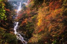 石空川渓谷の紅葉