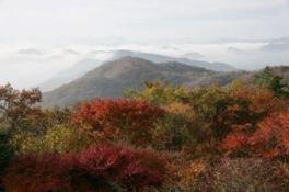 軽井沢(旧碓氷峠見晴台)の紅葉
