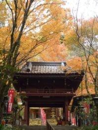 龍蔵寺の紅葉