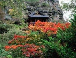 布引観音 釈尊寺の紅葉
