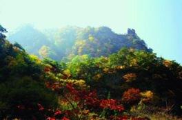 角間渓谷の紅葉