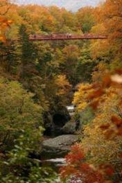 岩内仙峡の紅葉