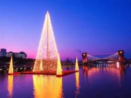 水辺に映えるイルミネーションツリーと天門橋のライトアップ