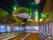 【臨時休館】市立室蘭水族館