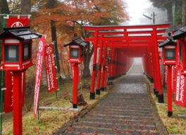 王地山公園の紅葉