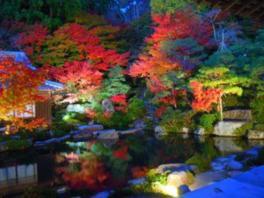 湖東三山 百済寺(国史跡)の紅葉