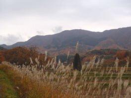 津黒高原の紅葉