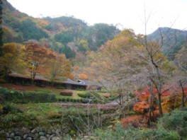 交流の森「龍頭峡」の紅葉