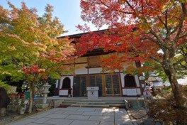 瀬戸内海国立公園 極楽寺山の紅葉
