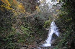 雄滝・雌滝の紅葉