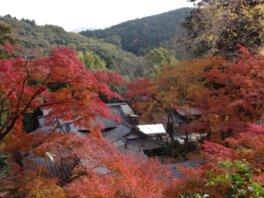 永勝寺の紅葉