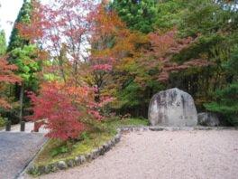 岡山県立森林公園の紅葉