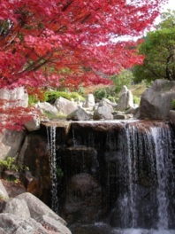 三郡山の紅葉