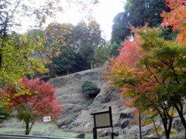 福岡県立四王寺県民の森の紅葉