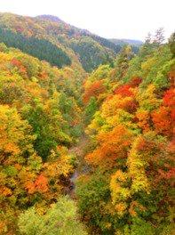 三途川渓谷の紅葉