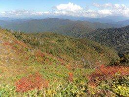 尾瀬国立公園 田代山の紅葉