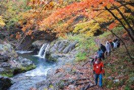 真瀬渓谷の紅葉