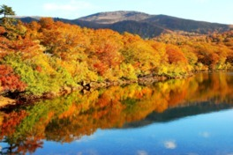 須川高原の紅葉