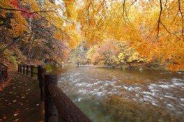 湯瀬渓谷の紅葉