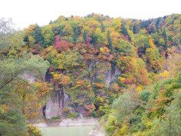 白神山地 素波里ダム周辺(素波里園地)の紅葉