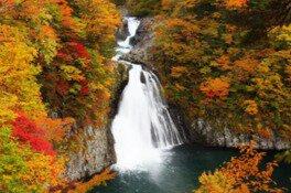 法体の滝の紅葉