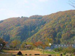 レークピア白水の紅葉