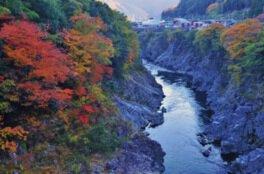 飛水峡の紅葉