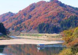 阿武隈ライン舟下りの紅葉