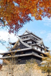 松江城山公園の紅葉