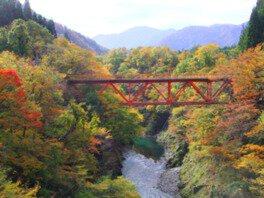 玉川渓流の紅葉