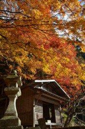 板井原集落の紅葉