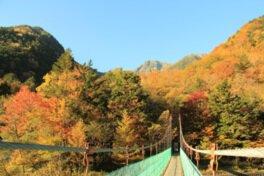 南アルプス白鳳渓谷の紅葉